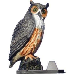 Bird Barrier Screech Owl